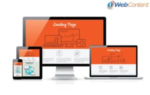 Talk to professional content writers about using landing pages.