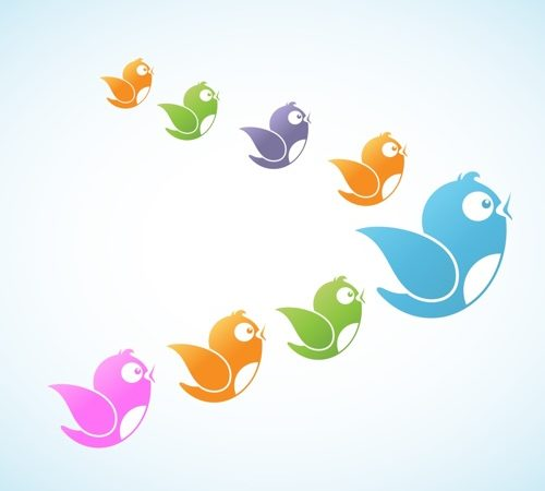 Find out how to increase Twitter followers.