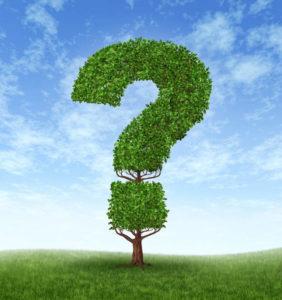 8. iwebcontent - evergreen content ebook - FAQ