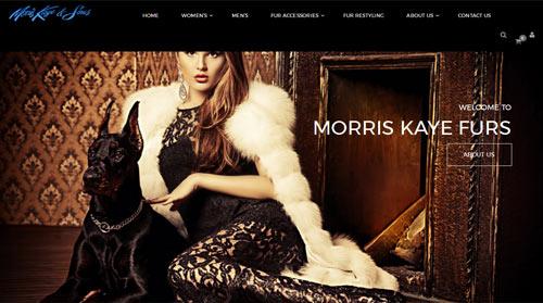 Morris Kaye Furs