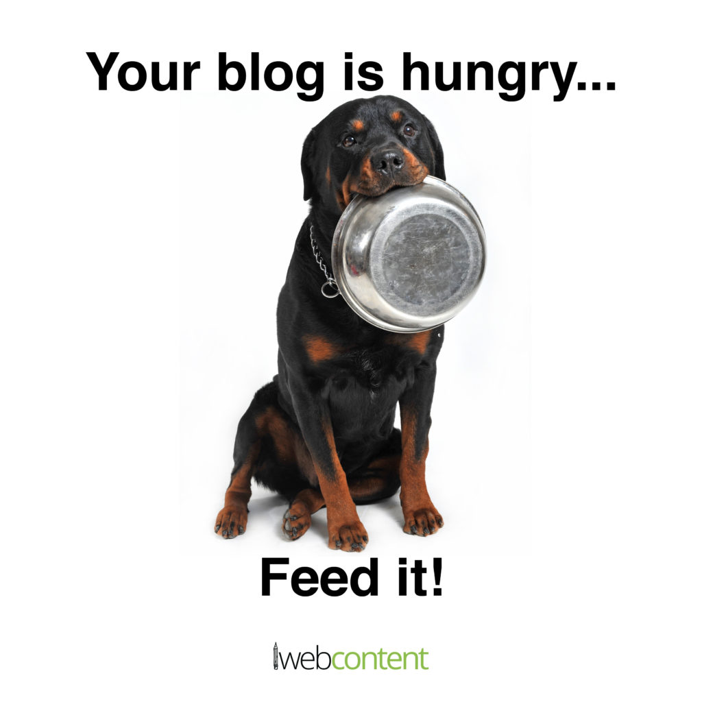 iwc May #2 meme - blog is hungry