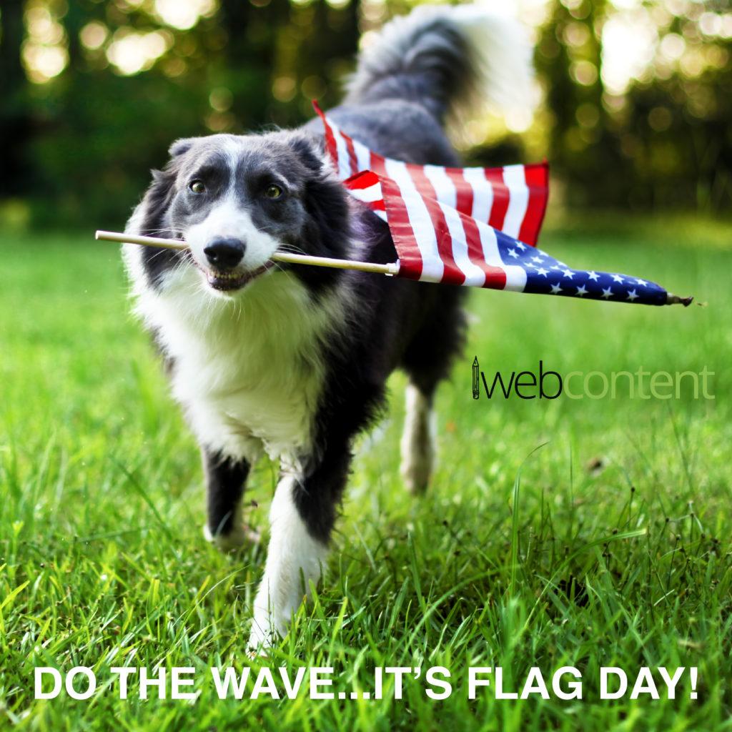 iwc meme - flag day