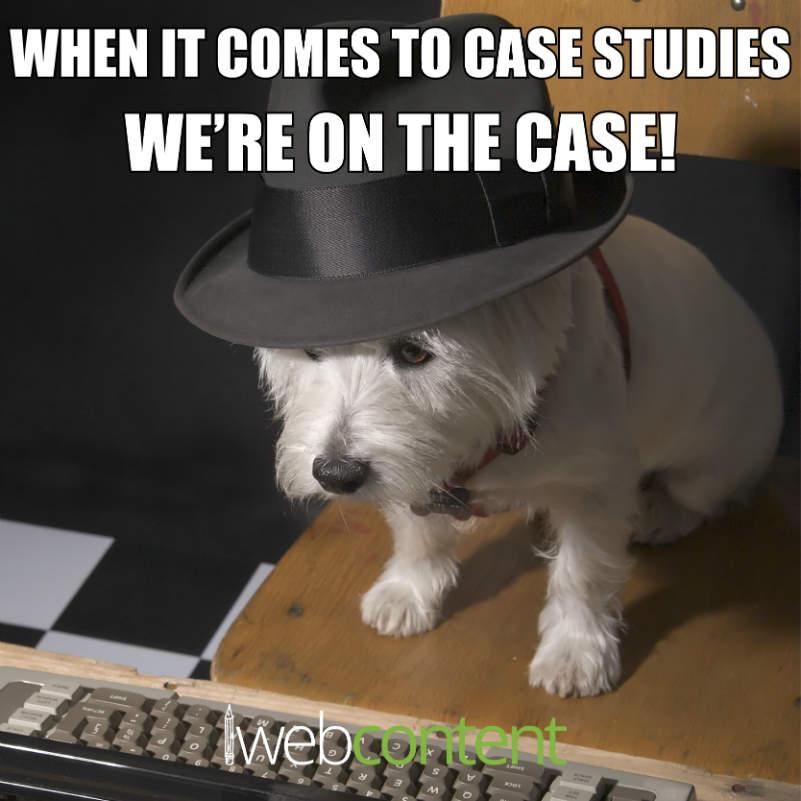 Case Studies meme