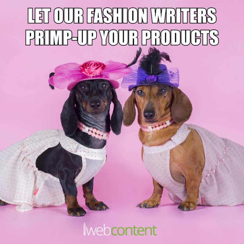 Fashion writer industry meme