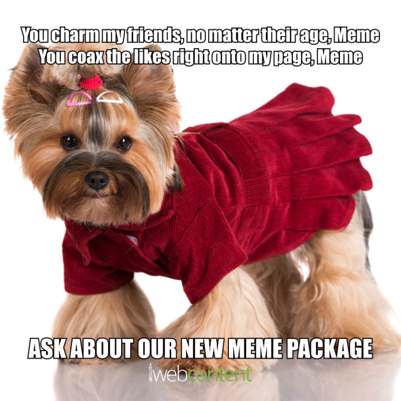 Oct Week  meme copy