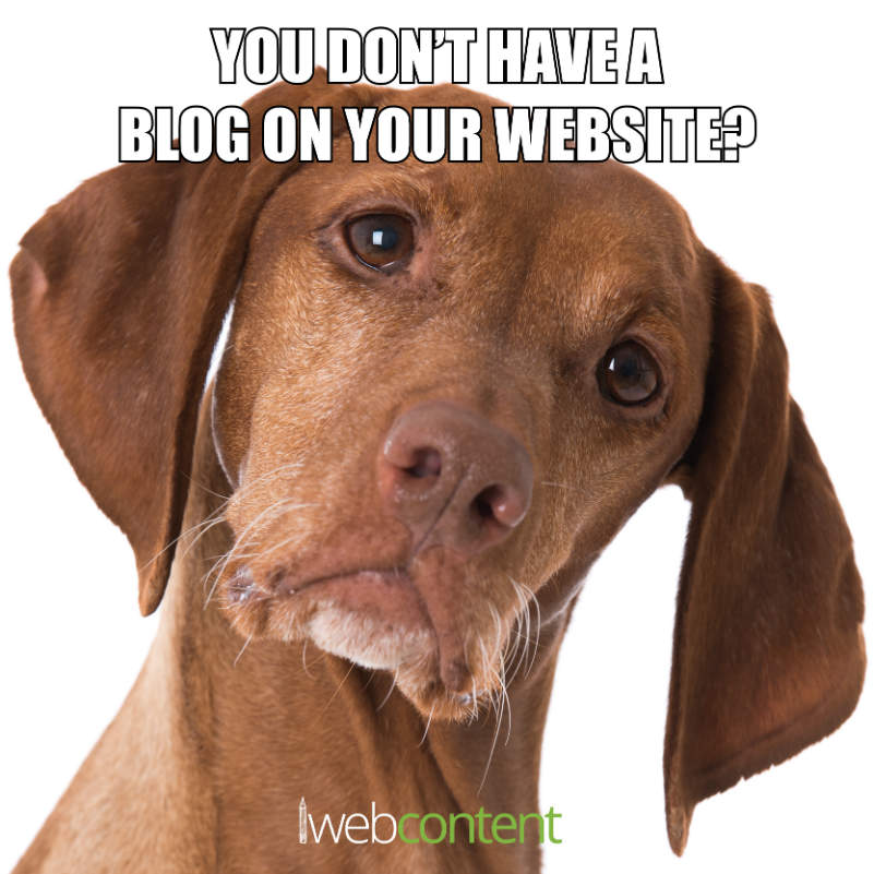 You don t have a blog meme