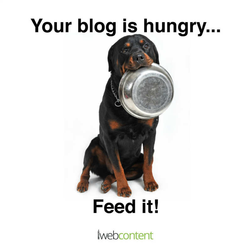 iwc May  meme blog is hungry
