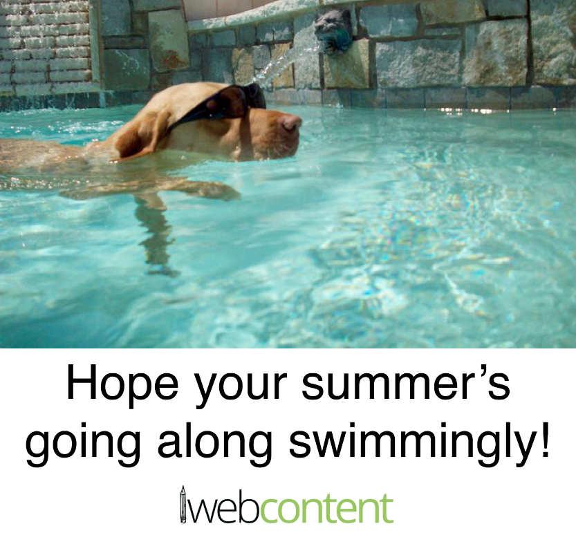 summer meme final