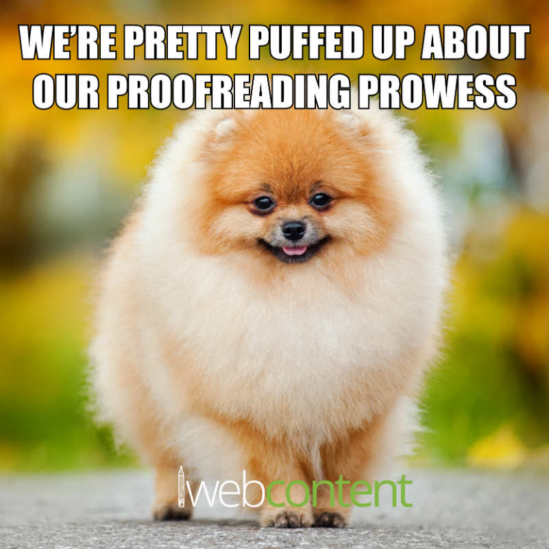 proofreading meme