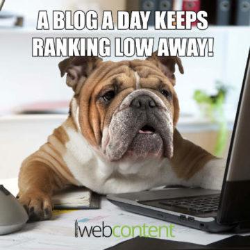 iwc blog writing meme