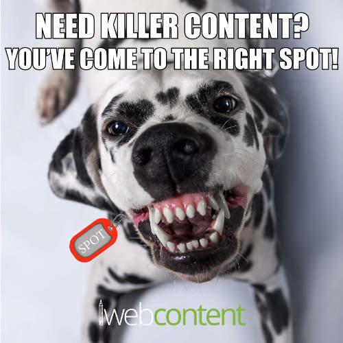 web content meme