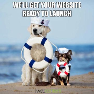 iwc web design meme