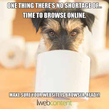 iwc meme - make sure your website is browser ready