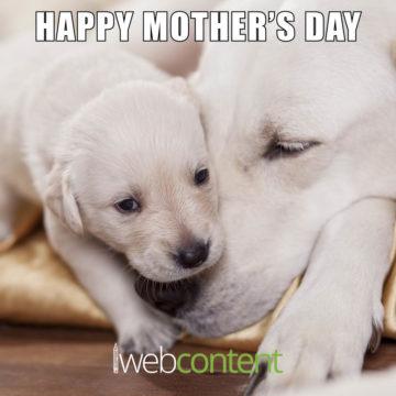 Mother's Day Meme 2020
