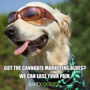 Cannabis Marketing meme - 2019