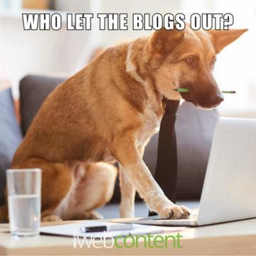 Blogging 2020 meme