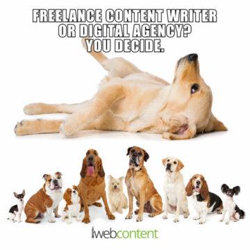 iwc freelance v digital agency meme